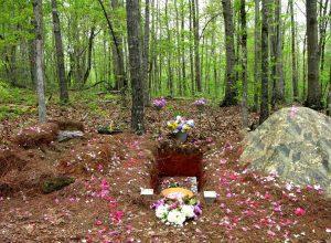 Reintoarcerea la sacru – credinte si ritualuri dacice
